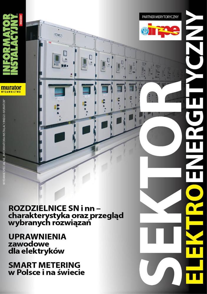 Sektor Elektroenergetyczny 2014