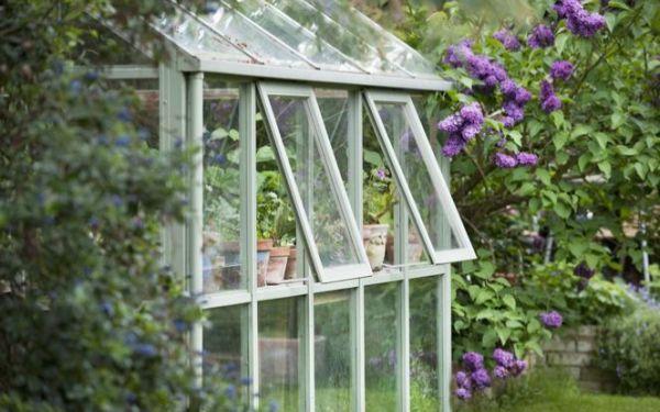 Maj w ogrodzie: jakie prace trzeba wykonać w ogrodzie w maju